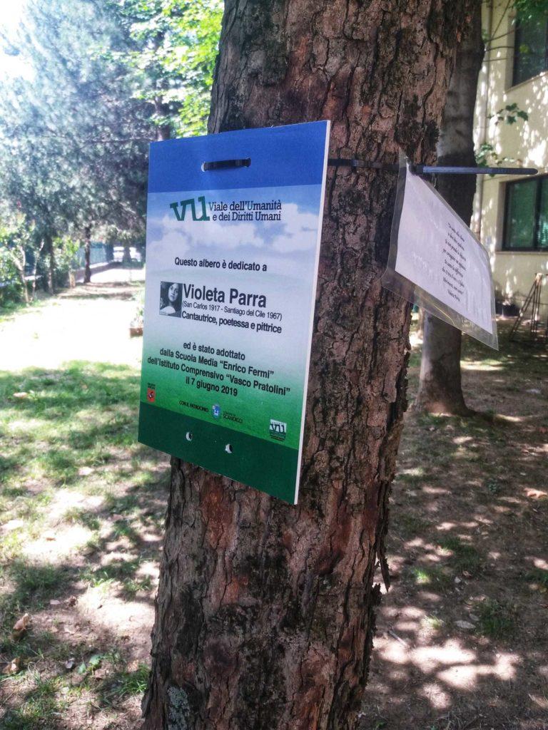 trees-768x1024